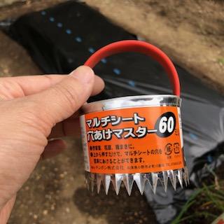 【混植】トウモロコシとエダマメの種まき【黒マルチ】