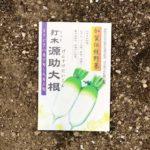【種まきメモ】ニンジン、ダイコン、ハクサイ