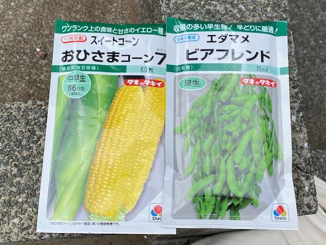 野菜のたね